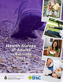 2011 Health Survey of Adults