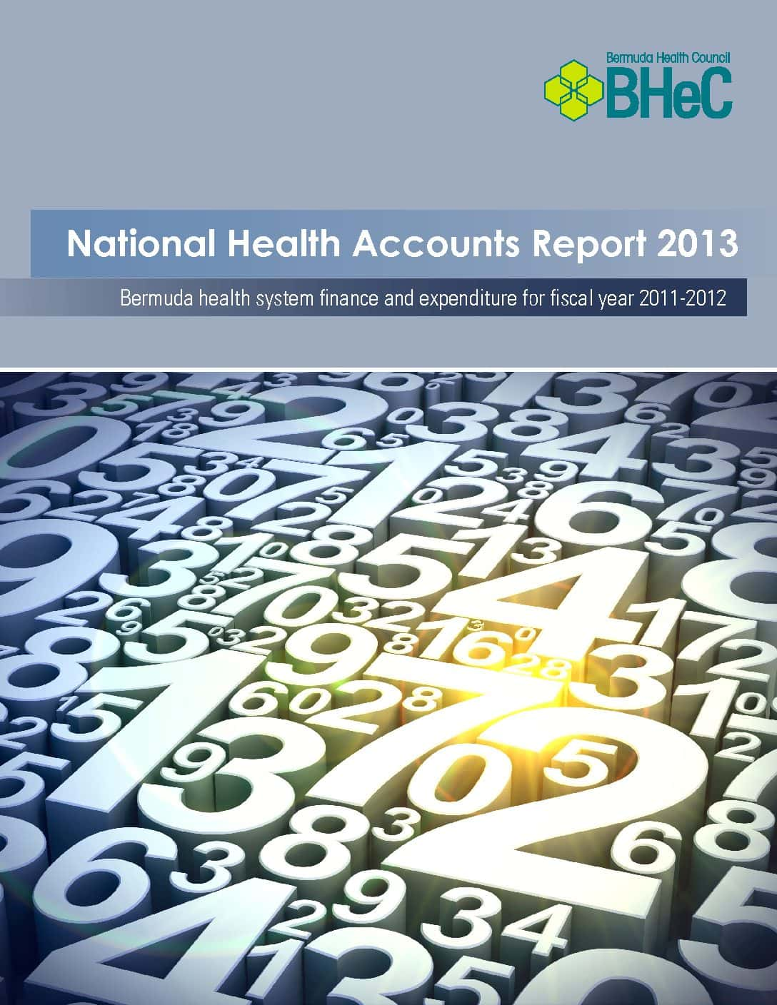2013 National Health Accounts