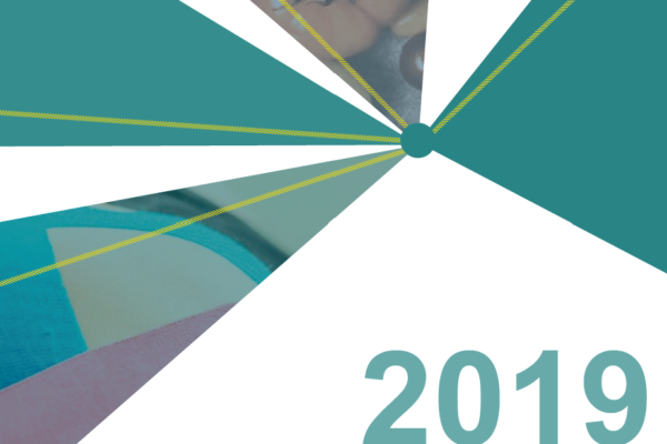 The 2019 Statutory Boards Self-Assessment Report